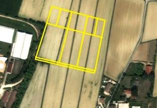 L'area del campo individuata dalle foto satellitari. Foto modificata da A. Donadel