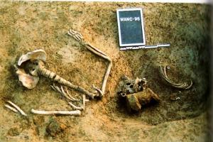 Caduto tedesco disarticolato ritrovato in Francia